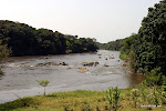 La rivire Epulu dans la rserve de faune  Okapi, en Ituri 2005.