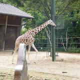 Zootour Teil 5