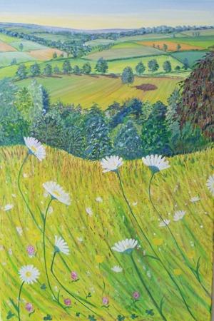 devon meadows heatherbell barlow