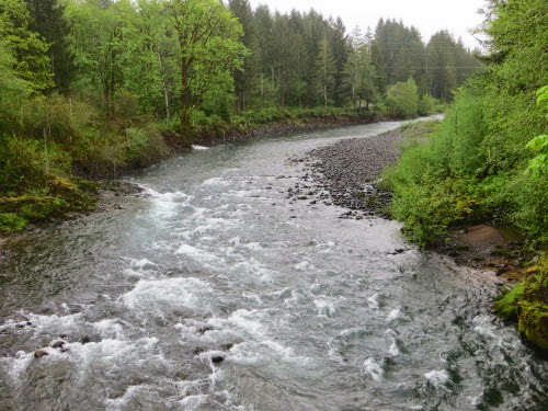 TillamookForestCenter-6-2014-05-3-12-08.jpg