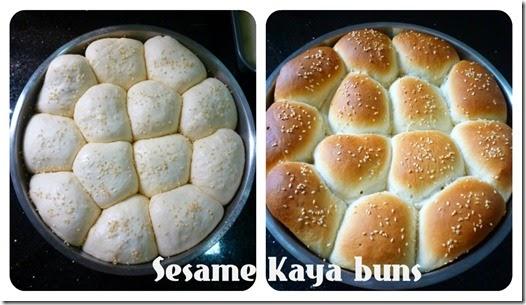 sesamekayabuns_collage
