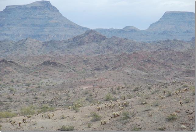 01-21-12 Desert Bar 004