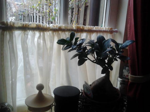 Vitrage keuken 9: nieuwe witte korte gordijn keuken vitrages tule