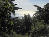 Looking towards the coast from Ili Ujolewung (Dan Quinn, July 2013)