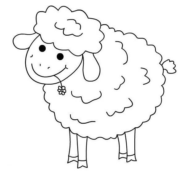 Imagenes de ovejas para niños - Imagui