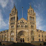 The Natural History Museum (author DAVID ILIFF).