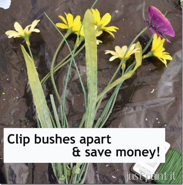 buy-bushes-cut-apart