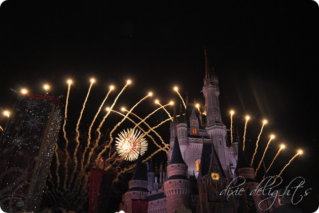 Disney December 2012 434