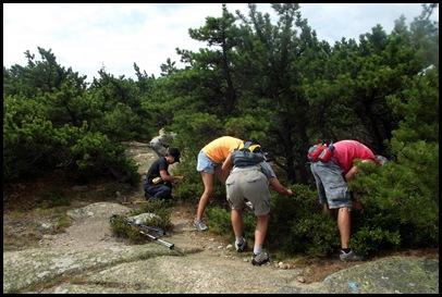 Dorr mountain hike 072