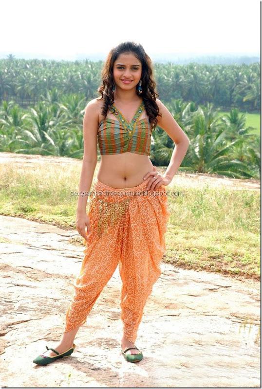 telugu-actress-Sheena-Shahabadi-hot-navel-legs-images