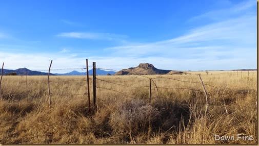 San Rafael Grasslands_002