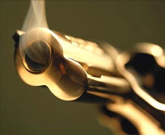arma-revolver--BLOG-MARI-FUXICO