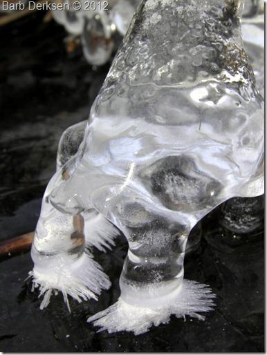 Barb Derksen Ice 2012  (29)