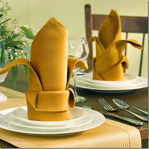 Table Napkin Folding Styles Photograph Pure Elegance Fold