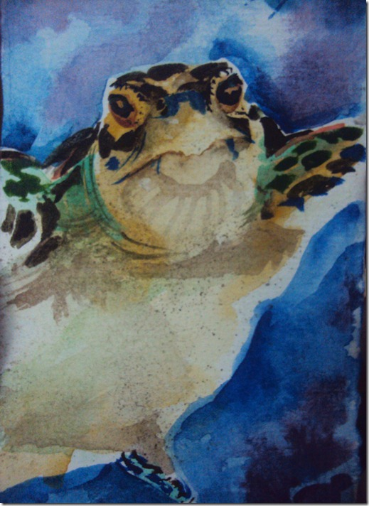 turtleinwatercolors