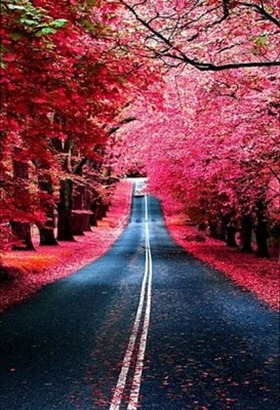 ROADS_AUTUMN