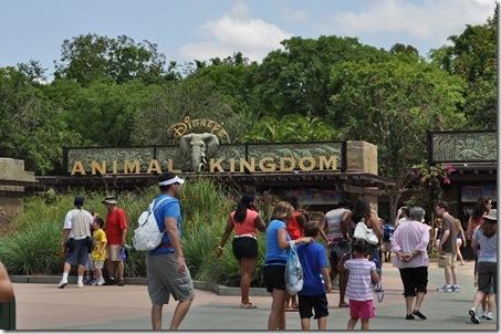 06-04-11 Disney final 002