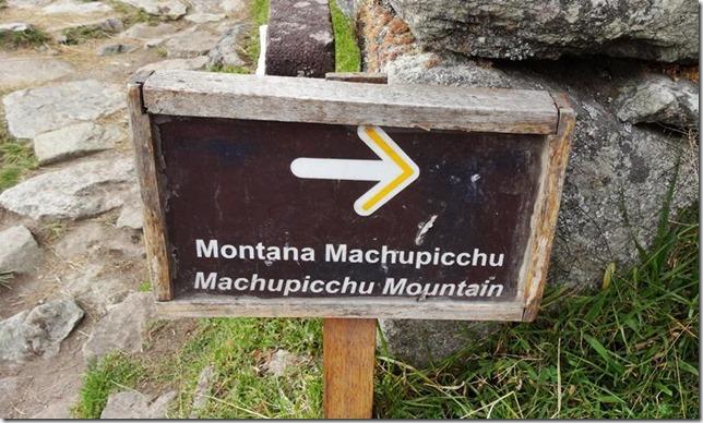 Machu_Picchu_DSC02141