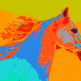 Painted Pony (rectangular crop) by Susan Byrd - Artistic Objects Other Objects ( horse, artistic, bright multi colors, digital painting, animal )