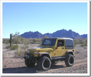 Ole Yeller in the Arizona desert near Bouse, Dec 2012.