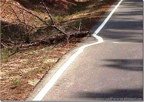 face imagem estrada