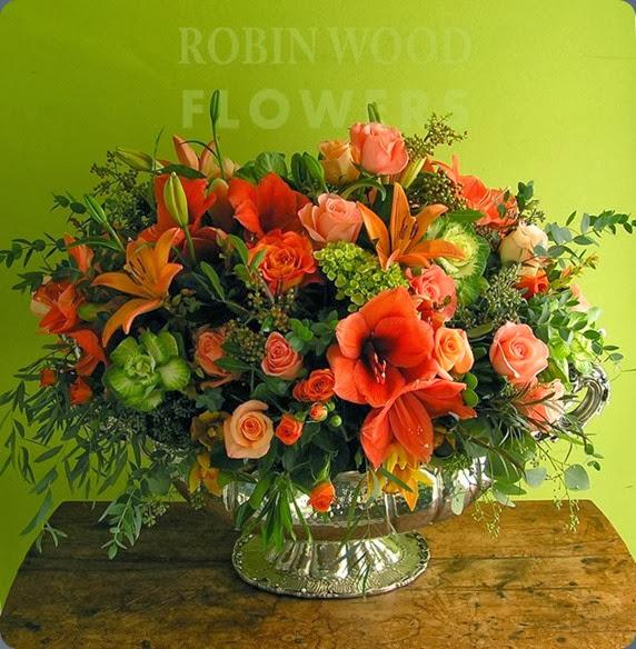 481657_559264677424233_542786620_n robin wood flowers