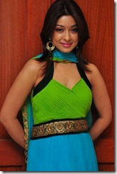 Payal Ghosh in_churidar