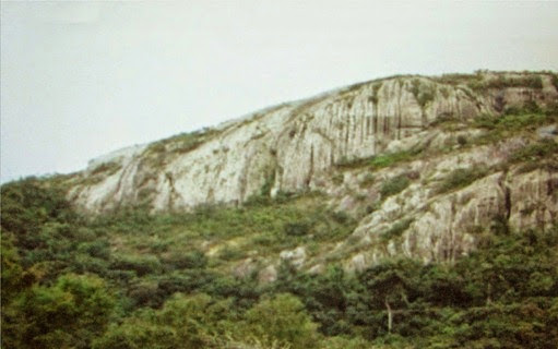 Planalto das Guianas, Laranjal do Jari - Amapà