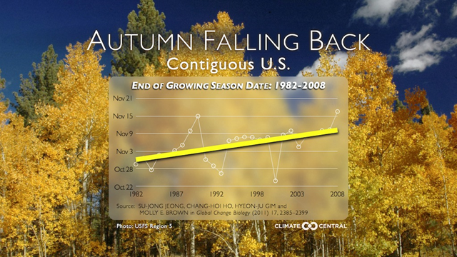 End of growing season date in the U.S., 1982-2008. The start to foliage season is on the move, with the season starting later and later in the U.S. since 1982. Graphic: Climate Central
