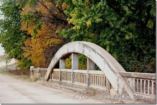 fall leaves and bridge