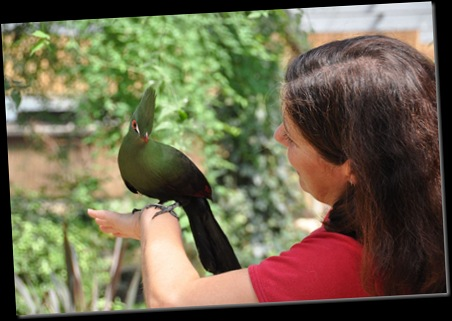 Lydia with Damien (Green Crested Touraco) DSC_0698