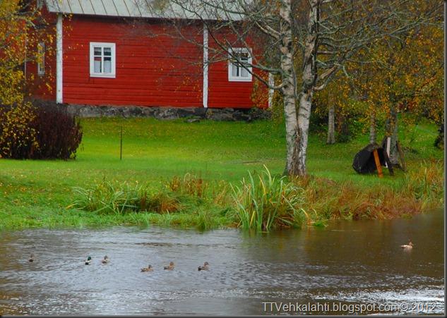 syksy alkukulku tulva 024