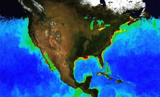 Coastal regions around the United States respond differently to ocean acidification. Scientists from 11 U.S. institutions measured levels of carbon dioxide and other forms of carbon in waters off the East Coast and the Gulf of Mexico and found that some U.S. coastal waters resist ocean acidification better than others. Graphic: NOAA Environmental Visualization Lab / LiveScience.com