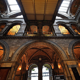 view up at NHM by Almas Bavcic - Buildings & Architecture Other Interior