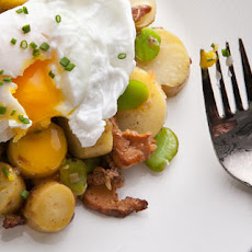 Warm Fava Bean and Chanterelle Salad with Poached Eggs
