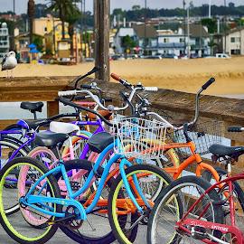 HB Bikes by Jose Matutina - Transportation Bicycles ( bike, transportation, huntington beach, bicycle,  )