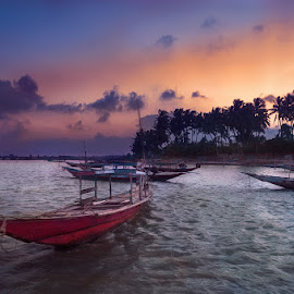 The Red Boat by Abhijit Das - Transportation Boats ( palm tree, red, waterscape, boat, landscapes )