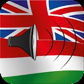 Hungarian talking phrasebook translator dictionary
