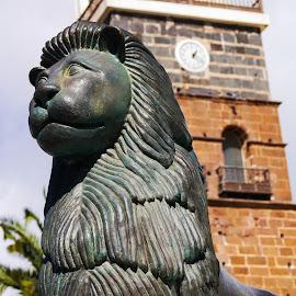 Lion by John Stewart  - Buildings & Architecture Statues & Monuments
