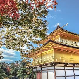 Osaka by Eric Low - Landscapes Travel