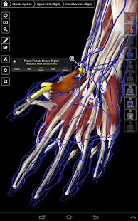 Essential Anatomy 3 APK Descargar