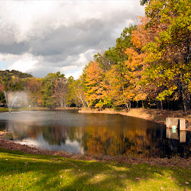 The Pond at SUNY Oneonta by Diane Clontz - Novices Only Landscapes ( fall colors, waterscape, college, fun, leaves )