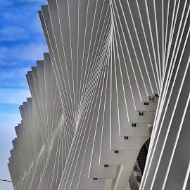 Stazione medio padana Calatrava by Marco Poli - Buildings & Architecture Architectural Detail