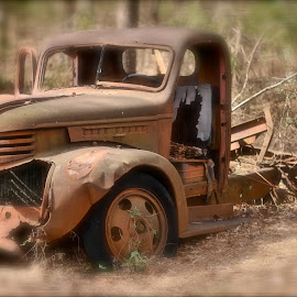 Farm Truck by Roy Walter - Transportation Automobiles ( automobiles, truck, transportation, rust, tire )