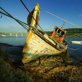 Zezé by Rubina Delgado - Landscapes Waterscapes ( old, sea, landscape, portugal, boat )