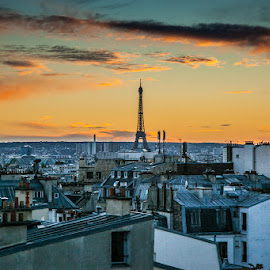 Paris and the Eiffel Tower by Paul Stonehouse - City,  Street & Park  Skylines ( eiffel tower, paris, paris skyline, france )