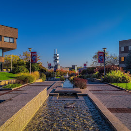 Stony Brook University by Yutong Pang - Buildings & Architecture Office Buildings & Hotels ( building, stony brook university, sky, fountain, wang center )