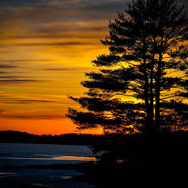 Late winter sunset - Northern Wisconsin by Michael Haagen - Landscapes Sunsets & Sunrises ( forzen, winter, sunset, trees, lake,  )
