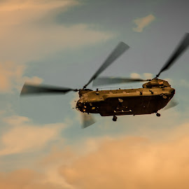 Chinook by Dan Clayton - Transportation Helicopters ( clouds, helicopter, chinook, sunset, military )