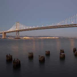Twilight On The Bay Bridge by Janet Marsh - Buildings & Architecture Bridges & Suspended Structures ( nightsf, twilight, bay bridge,  )